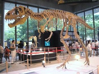 018ゴルゴサウルス.JPG